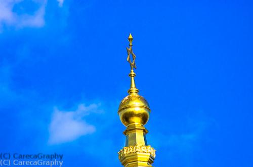 Bild 48 Golden vor Blau